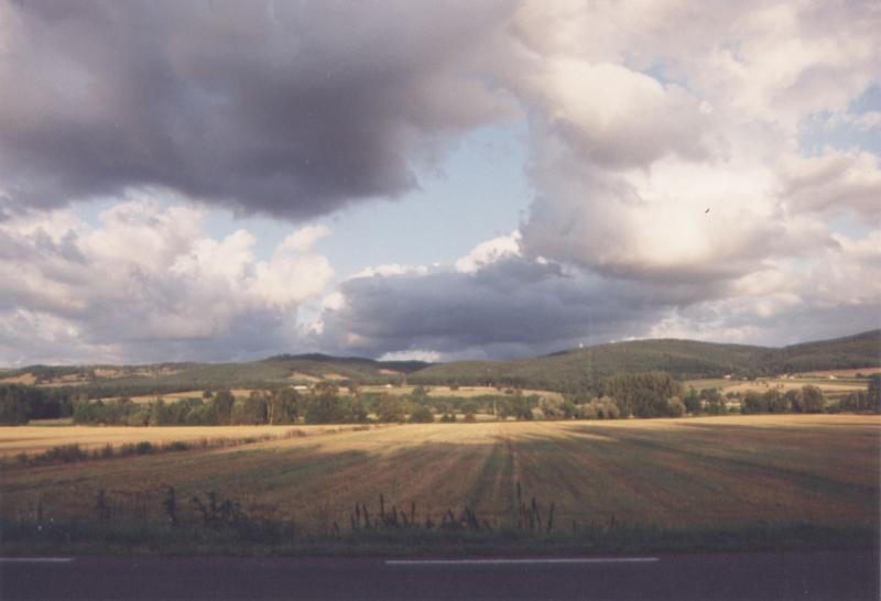 Foto naturalistiche pagina 1 for Scaffali di campagna francese
